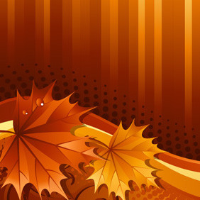 Background With Maple Leaves - vector gratuit #214317