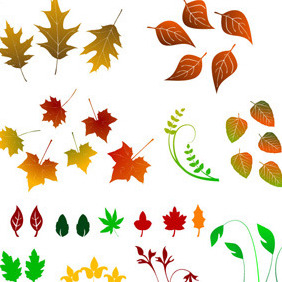 Big Collection Of Various Leaves - Free vector #214447