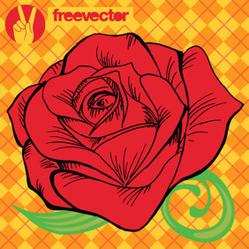 Rose Vector - Free vector #220167