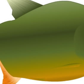 Fish - Free vector #223497