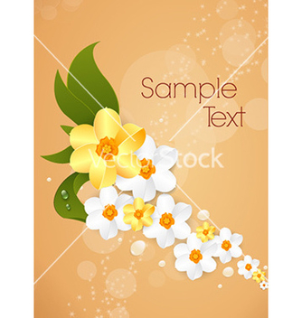 Free floral background vector - Free vector #227537