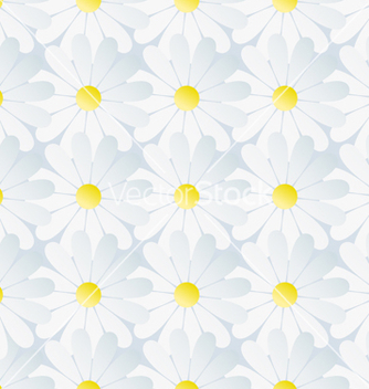 Free spring background seamless pattern white chamomile vector - Free vector #235067
