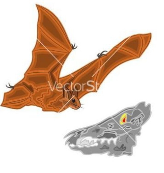 Free halloween bat and skull vector - vector gratuit #236917