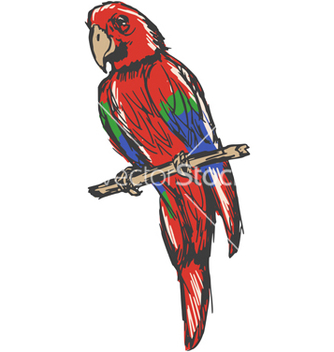 Free macaw vector - Free vector #237677