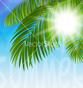 Free palm tree vector - vector gratuit #238077