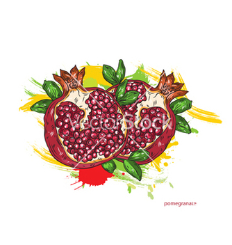 Free pomegranate with colorful splashes vector - vector gratuit #243217