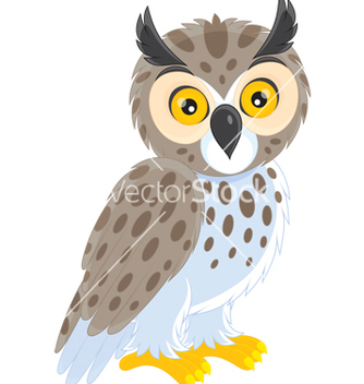 Free owl vector - Free vector #243807