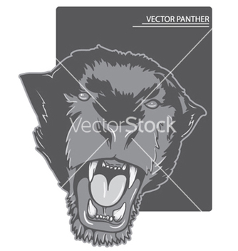 Free angry panther vector - Kostenloses vector #253617