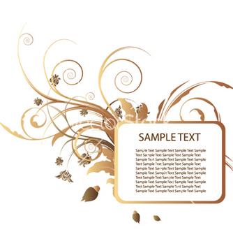 Free floral frame vector - Kostenloses vector #253807