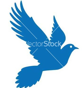 Free pigeon vector - Free vector #270037