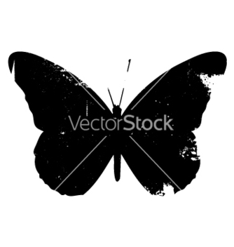 Free grunge butterfly vector - Free vector #270587