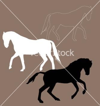 Free wild horses vector - Free vector #270947