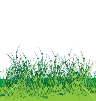Free wild flower garden vector - vector gratuit #270987