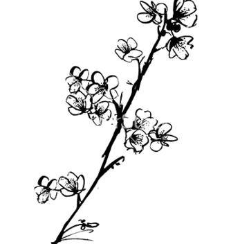 Free cherry blossom ink vector - бесплатный vector #271487