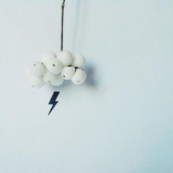 Snowberry and lightning isolated on white background - Free image #272187