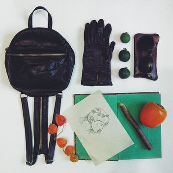 small backpack with gloves, sunglasses, book and fruits - image gratuit #272197