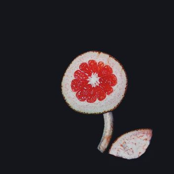 Cut grapefruit on a black background - бесплатный image #272257