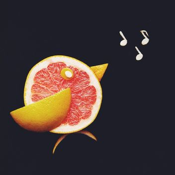 Grapefruit bird - image #272287 gratis