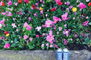 Feet in snickers near spring flowers - бесплатный image #272347