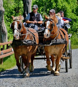 carriage drawn by two horses - image gratuit #274917