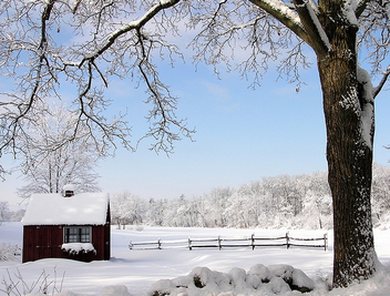 farmstand in winter - Free image #275877