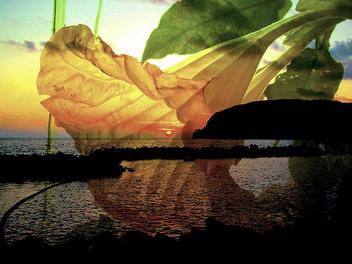 Sunset - Free image #276107