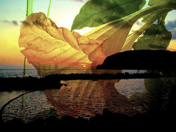 Sunset - Kostenloses image #276107
