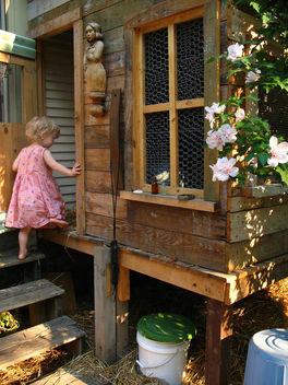 chicken coop - image gratuit #277297