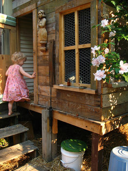 chicken coop - image gratuit(e) #277297
