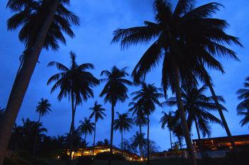 Koh Samui (THAILAND/LANDSCAPE) I - Free image #277527