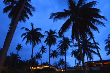 Koh Samui (THAILAND/LANDSCAPE) I - Kostenloses image #277527