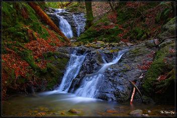 Mertyl Falls - Free image #279587