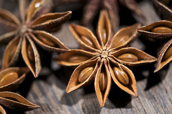 Star Anise Series - Free image #280837