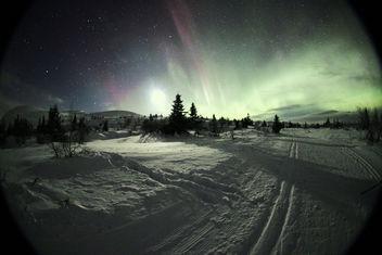 Trysil Aurora Borealis - Free image #285897