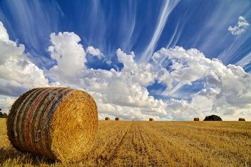Straw Bale - image #287167 gratis