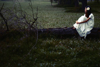 Girl In The Woods - image #287217 gratis