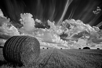 Straw Bale - Free image #288577