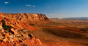 Desert landscape V - image #290177 gratis