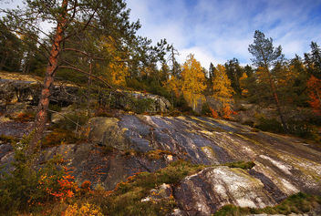 Koli National Park - Free image #290397