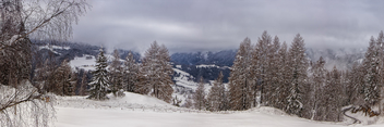 Winter panorama - Free image #291047