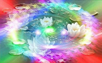 Rainbow Lotus - Free image #293077