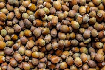 Hazelnuts - image gratuit #293687
