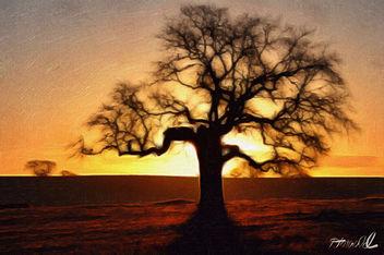Sunrise - image #294347 gratis