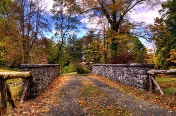 Fall in Sleepy Hollow - Free image #294847