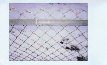 Backyard Fence. - Free image #296157