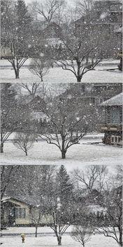 Snow - image #296747 gratis