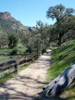 Trail - Kostenloses image #296807