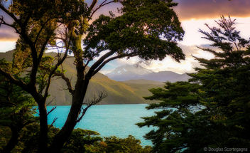 The colors of Patagonia - Free image #296827