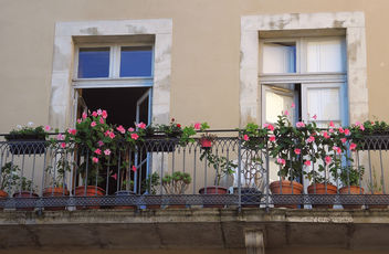 France (Carcassonne) Balcony flowers - Free image #298707