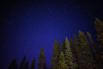 Starry night - Free image #298787